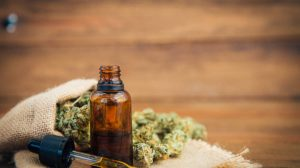olio di cbd marijuana